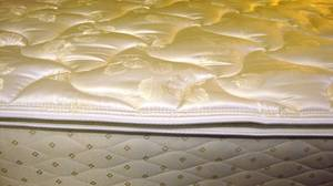 Sealy Bliss Imperial Pillow Top